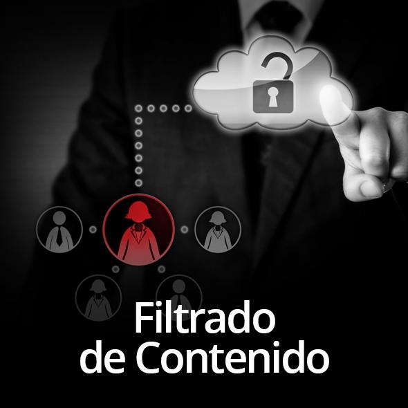Protektnet Consulting Services S.A. de C.V.