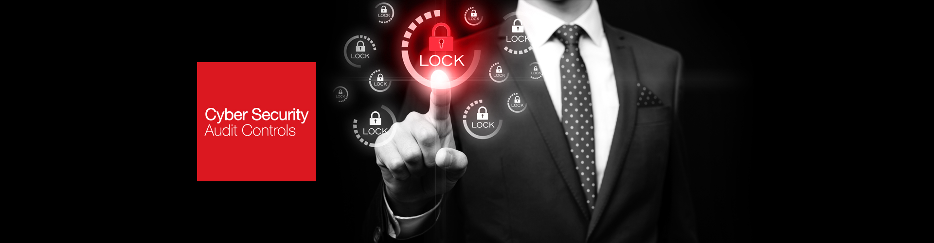 CYBER SECURITY AUDIT CONTROLS